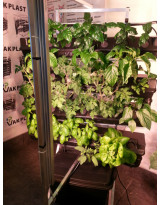 Vertical hydroponic system - one wall small - 1SM with light